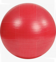 Bola Gym Ball 55cm vermelha c/bomba p/encher