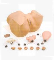 Simulador médico Treinador ginecológico